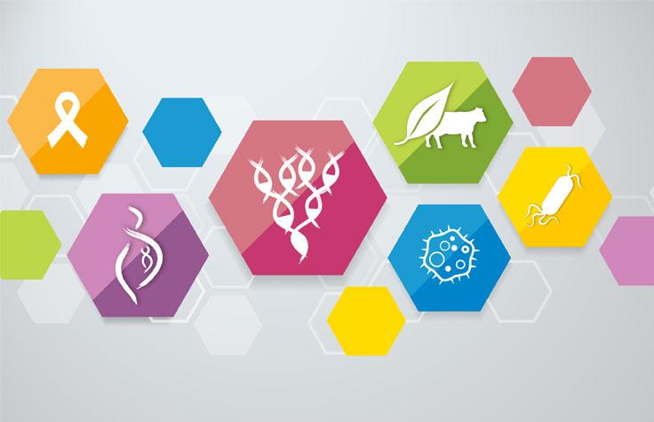 Feature Articles | Research advances made using Illumina technologies