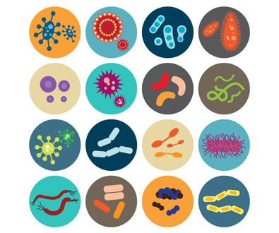 Backgrounder: The Many Facets of Microbial Genomics