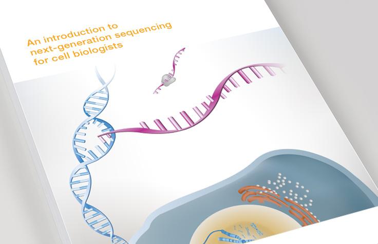 Cellular & Molecular Biology Research
