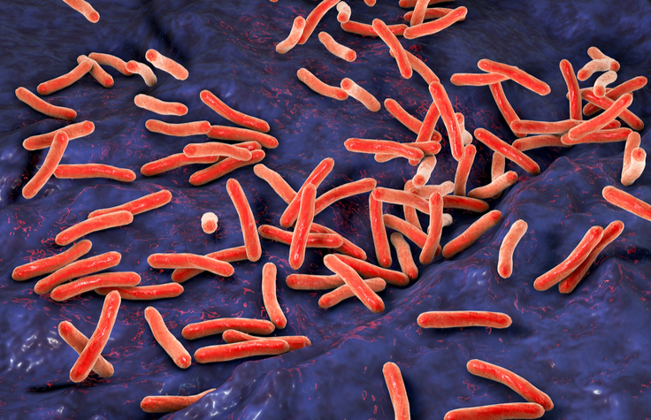 Seeking the Source of Bacterial Drug Resistance