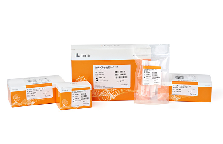 Image Source