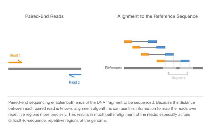 Paired End Vs Single Read Sequencing Technology