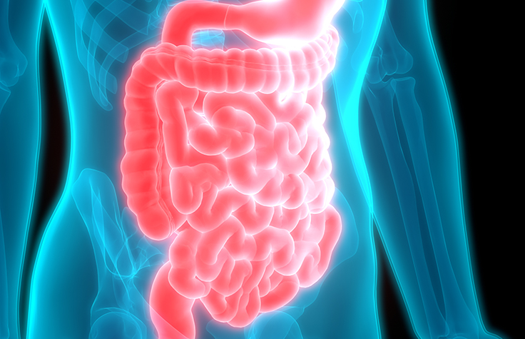 Gut-Brain Axis: Melancholy of Our Gut Microbiome